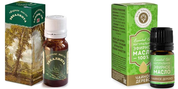 Масло эвкалипта и чайного дерева