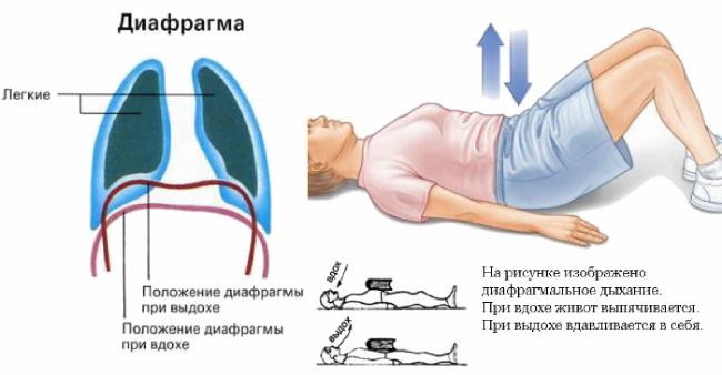 Диафрагмальная гимнастика